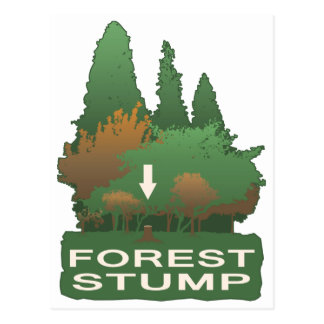 Forest Stump Postcard