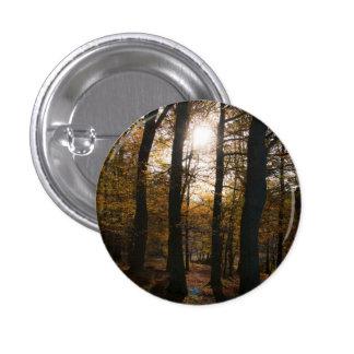 Forest sun 3 cm round badge