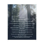 Forest & Sun Do It Anyway Canvas Prints