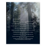 Forest & Sun Do It Anyway Poster
