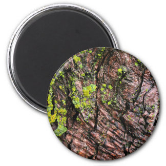 Forest Themed 6 Cm Round Magnet