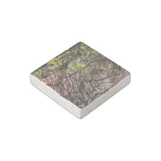 Forest Themed Stone Magnet