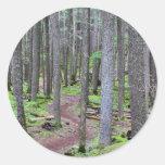 Forest Trail Round Stickers