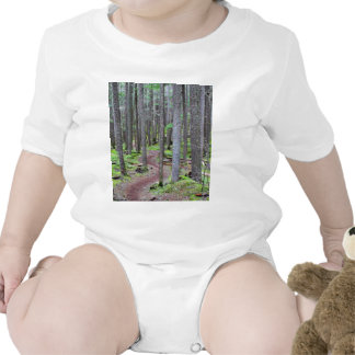 Forest Trail Shirt