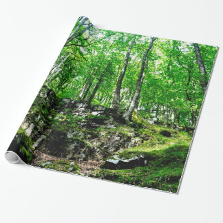 Forest Trails Walking in Wales Neath Valley Wrapping Paper