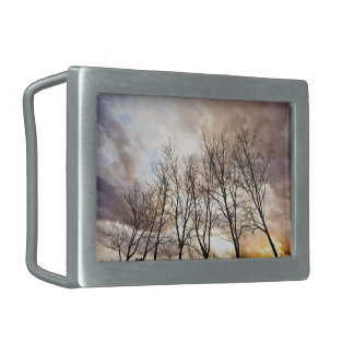 Forest Trees in Autumn with Cloudy Sky Rectangular Belt Buckles