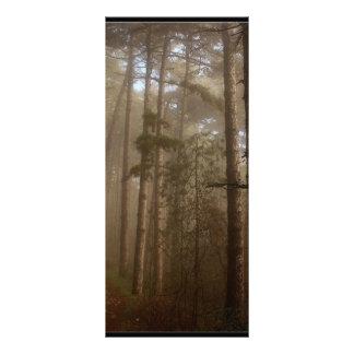 Forest Trees Natural Landscape Custom Rack Card