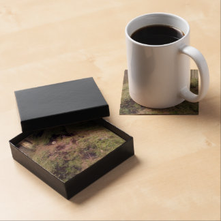 Forest Troll Beverage Coasters