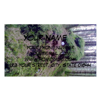 Forest Troll Pack Of Standard Business Cards
