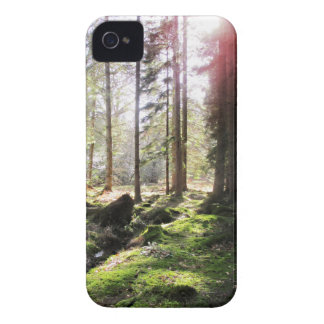 Forest View 1 Case-Mate iPhone 4 Case