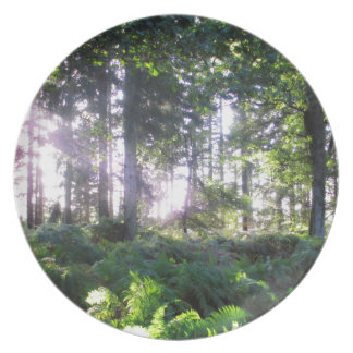 Forest View 2 Dinner Plate