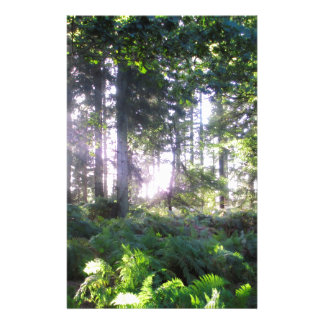 Forest View 2 Stationery