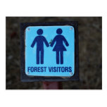 Forest Visitors Post Card
