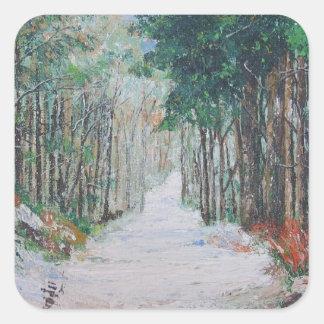 Forest walk, Yorkshire, England. Square Sticker