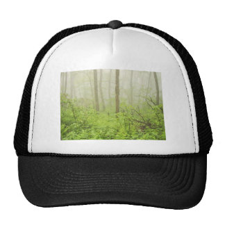 Forest With Fog Mesh Hats