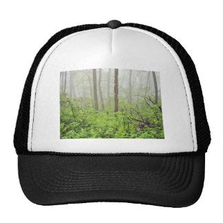 Forest with fog trucker hat