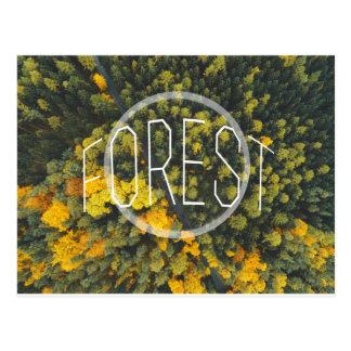 Forest - wowpeer postcard