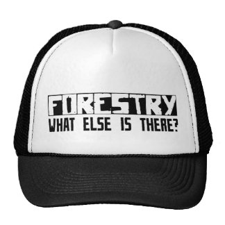 Forestry What Else Is There? Cap
