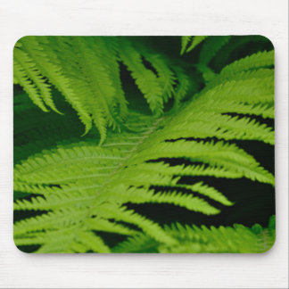Forests & Jungles Mousepad