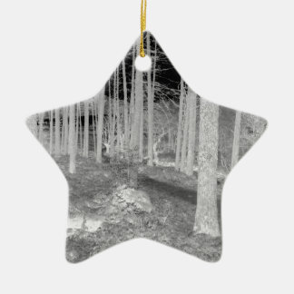 Forests of Ardentiny Ceramic Star Decoration