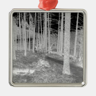 Forests of Ardentiny Silver-Colored Square Decoration