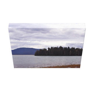 Forever Alone In Alaska Gallery Wrap Canvas