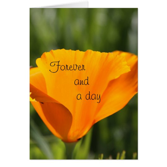 Forever and a day card