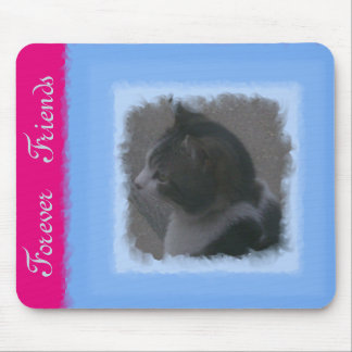 Forever Friends Mouse Mat
