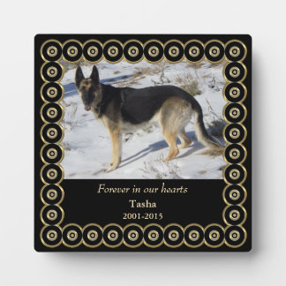 Forever Gold Frame Pet Memorial Template