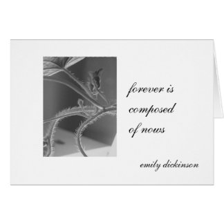 """""""Forever is composed of nows."""" Emily Dickinson Card"""