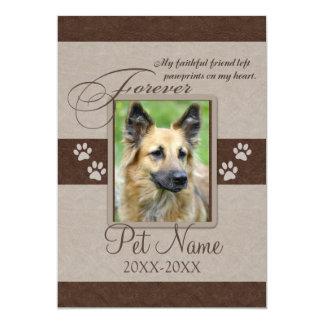 Forever Loved Pet Sympathy 13 Cm X 18 Cm Invitation Card