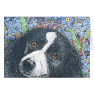 Forget me not Border Collie dog Greeting Card