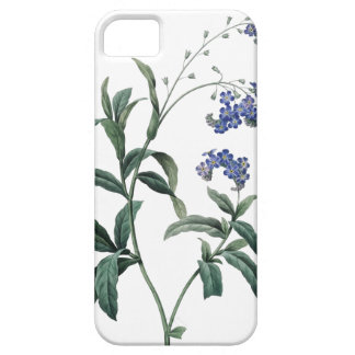Forget-me-not botanical illustration of Redoute iPhone 5 Case