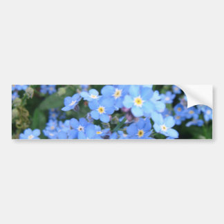*Forget-Me-Not* Bumper Sticker