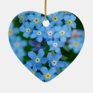 Forget-me-not flowering christmas ornament