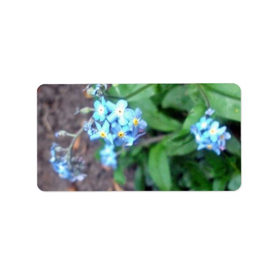 Forget-me-not flowers label