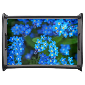 Forget-me-not Flowers Serving Tray