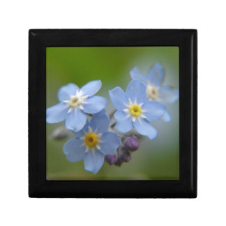 Forget Me Not Small Square Gift Box
