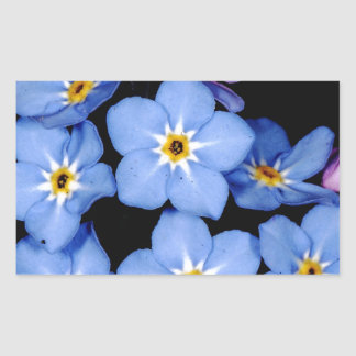 Forget-me-not Rectangular Sticker