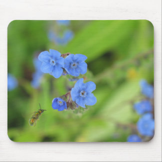 Forget Me Not With Bee Mouse Mat