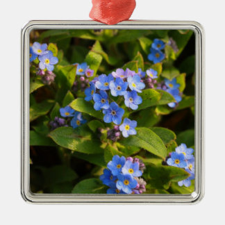 forget-me-not with dew christmas ornament