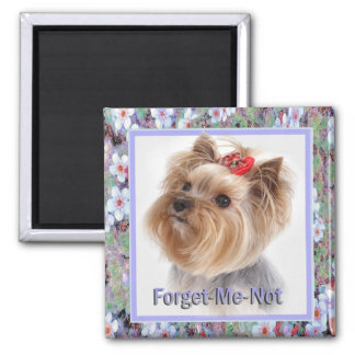 Forget Me Not Yorkie gifts Square Magnet