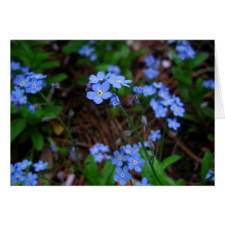 Forget-Me-Nots Notecard