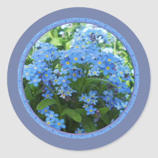 Forget me nots round sticker