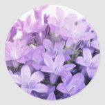 Forget Me Nots Sticker