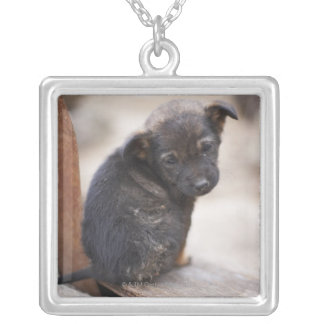 Forlorn puppy silver plated necklace