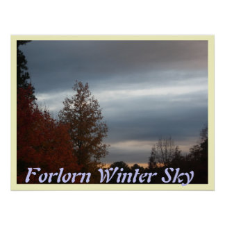 Forlorn Winter Sky Posters
