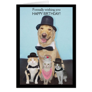 Formally Wishing You Happy Birthday Greeting Card