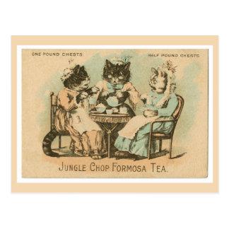Formosa Tea Cats Postcard