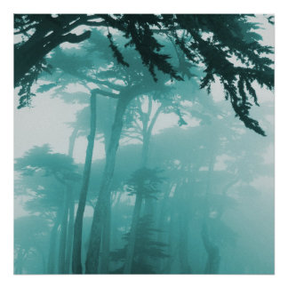 Forrest Fog photo painting Posters